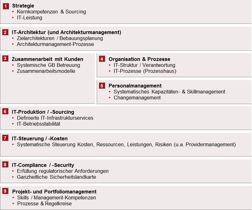 IT Assessment -  IT-Erfolgsfaktoren